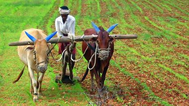 YSRCP Supports New Farm Bills: వ్యవసాయ బిల్లులకు వైసీపీ మద్దతు, రైతులు ముందుగానే ధర నిర్ణయించుకునే అవకాశం, మార్కెట్ కమిటీల నియంతృత్వానికి తెరపడుతుందని తెలిపిన వైసీపీ ఎంపీ విజయ సాయి రెడ్డి