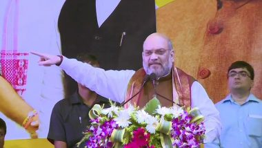 Delhi Election 2020: బీజేపీకి ఓటు వేస్తే దేశం సురక్షితంగా ఉంటుంది, ఢిల్లీ ప్రచార సభలో ఆప్ మీద నిప్పులు చెరిగిన అమిత్ షా, మమ్మల్ని గెలిపిస్తే షహీన్బాగ్ లాంటి ఘటనలు ఇక జరగవన్న కేంద్ర హోం మంత్రి