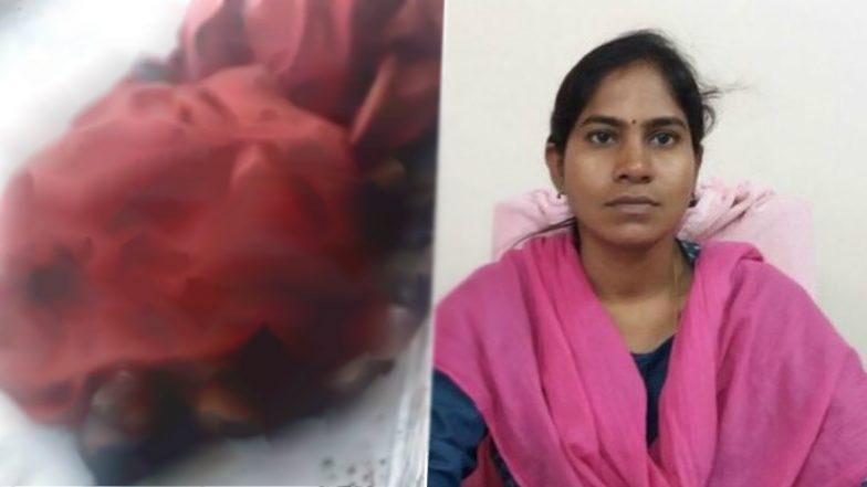Tehsildar Vijaya Incident: తహసీల్దారుపై పెట్రోల్ పోసి నిప్పంటిచిన దుండగుడు, ఆఫీసులోనే సజీవ దహనమైన తహసీల్దార్ విజయా రెడ్డి, భయభ్రాంతులకు గురిచేసిన ఘటన