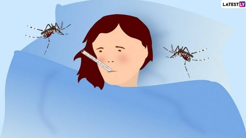 Dengue Fever Prevention: నీరసంగా అనిపిస్తూ ఆకలి వేయడం లేదా? అయితే అశ్రద్ధ చేయకండి. డెంగీ జ్వరం లక్షణాలు, నివారణ పద్ధతులను తెలుసుకోండి