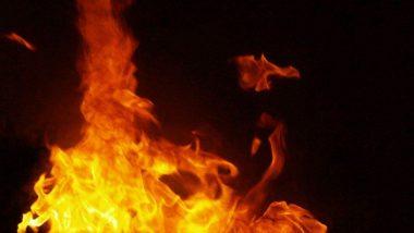 Shocking Incident: మటన్ కూర తక్కువ వడ్డించిందని భార్యకు నిప్పు పెట్టిన భర్త, చికిత్స పొందుతూ భార్య మృతి, మహారాష్ట్రలో జరిగిన దారుణం