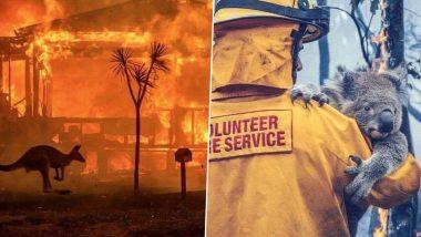 Australia Bushfires: 100 కోట్లకు పైగా ప్రాణులు సజీవదహనం, నిరాశ్రయులైన వేలమంది, మనసులు కలిచివేస్తున్న ఆస్ట్రేలియాలో రగిలిన కార్చిచ్చు, ఈ లెక్కలో మరో 10 వేల ఒంటెలను అధికారికంగా చంపనున్న ప్రభుత్వం