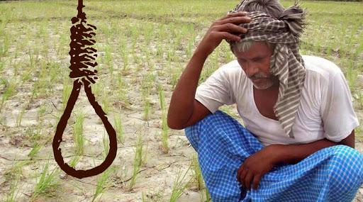 Maharashtra Farmer Suicides: 300 మంది రైతుల ఆత్మహత్యలు, మహారాష్ట్రలో అధికార కుమ్ములాటకు బలైన కర్షకులెందరో..,ఒక్క నవంబర్ నెలలోనే జరిగిన విషాద ఘటన ఇది, దిగ్భ్రాంతికర విషయాన్ని వెల్లడించిన రెవిన్యూ శాఖ