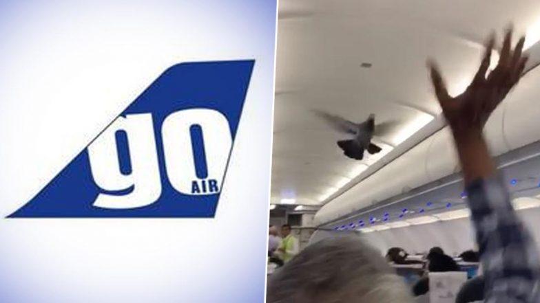 Pigeon Inside The Plane: విమానంలో పావురం హల్చల్, పట్టుకునేందుకు నానా తంటాలు పడిన గోఎయిర్ సిబ్బంది, గోఎయిర్ అధికారులకు ఫిర్యాదు చేసిన ప్రయాణికులు