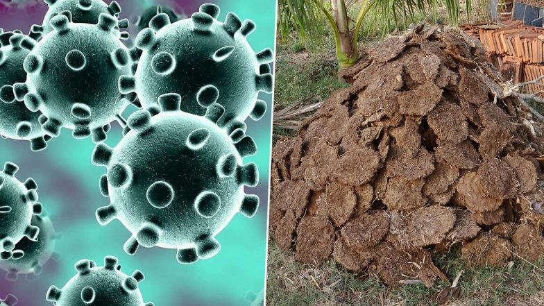 Cow Dung for Coronavirus: కరోనావైరస్ నివారణకు ఆవు పేడ, ఆవు మూత్రం దివ్యౌషధాలు, అసెంబ్లీలో స్పీచ్ దంచికొట్టిన ఎమ్మెల్యే, నోరెళ్ల బెట్టిన సహచర సభ్యులు