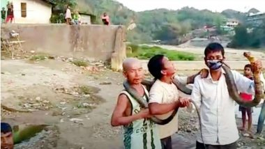 Arunachal Hunters: ఆకలికి తట్టుకోలేక 12 అడుగుల కింగ్ కోబ్రాను చంపేశారు, లాక్డౌన్ నేపథ్యంలో అరుణాచల్ ప్రదేశ్లో ఘటన, వన్యప్రాణుల రక్షణ చట్టం కింద కేసు నమోదు
