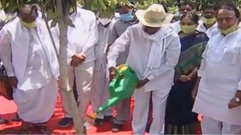 Haritha Haram Programme: అల్లనేరేడు మొక్కను నాటిన కేసీఆర్, నర్సాపూర్ నుంచి ఆరో విడత హరితహారం కార్యక్రమం ప్రారంభం, ఈ ఏడాది 30 కోట్ల మొక్కలు నాటడమే ప్రభుత్వం లక్ష్యం