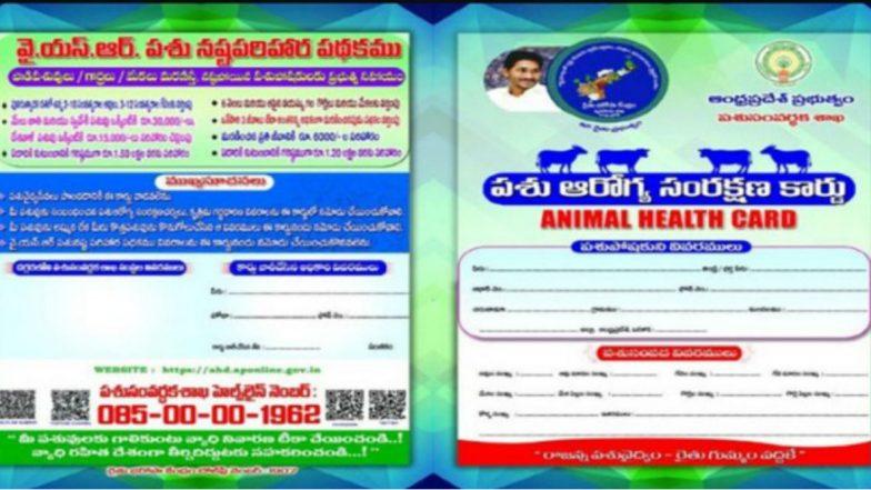 Animal Health Cards in AP: ఏపీ ప్రభుత్వం మరో సంచలన పథకం, మూగ జీవాల కోసం వైఎస్సార్ పశు సంరక్షణ స్కీం, మూగజీవాలకు ఆరోగ్య రక్షణ కార్డులు మంజూరు