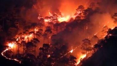 Uttarakhand Forest Fire: చమోలిలో అడవిలో భారీ అగ్ని ప్రమాదం, నలుగురు మనుషులు, ఏడు జీవాలు మృతి, బుగ్గయిపోయిన వందల హెక్టార్ల అడవి, నగరానికి చేరువగా వస్తున్న మంటలు