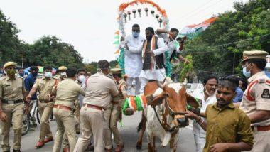 Damodar Rajanarasimha: ఎడ్ల బండిపై నుంచి కిందపడిన కాంగ్రెస్ సీనియర్ నేత దామోదర రాజనర్సింహ, కాలికి స్వల్ప గాయం, పెట్రోల్, డీజిల్ ధరల పెంపుకు వ్యతిరేకంగా రాష్ట్ర వ్యాప్తంగా నిరసనలు చేపట్టిన కాంగ్రెస్