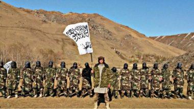 Afghanistan Crisis: అబ్దుల్ అలీ మజారీ విగ్రహం ధ్వంసం, అఫ్గాన్ తొలి మహిళా గవర్నర్ సలీమా మజారీని అదుపులోకి తీసుకున్న తాలిబన్లు, హక్కుల కోసం పోరాడుతున్న ఆప్ఘాన్ మహిళలు