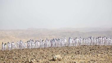 Dead Sea in Israel: డెడ్ సీ ని కాపాడుకోవడానికి 300 మంది నగ్నంగా నిలబడ్డారు, సముద్రం వద్ద న్యూడ్గా ఫోటోలకు ఫోజులిచ్చిన వాలంటీర్లు, వీరిని తన కెమెరాలో బంధించిన అమెరికన్ ఫొటోగ్రాఫర్ స్పెన్సర్ టునిక్